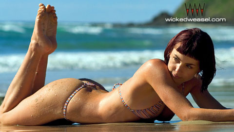 Wicked Weasel